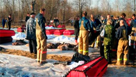 Украинские воины освободили Николаевку. 50 боевиков сдались, - Аваков - Цензор.НЕТ 7827