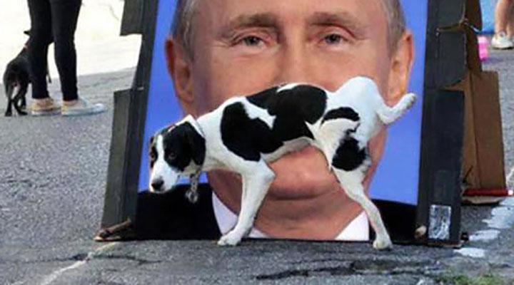 Путин признался, что до сих пор хранит партбилет и симпатизирует коммунизму - Цензор.НЕТ 5277