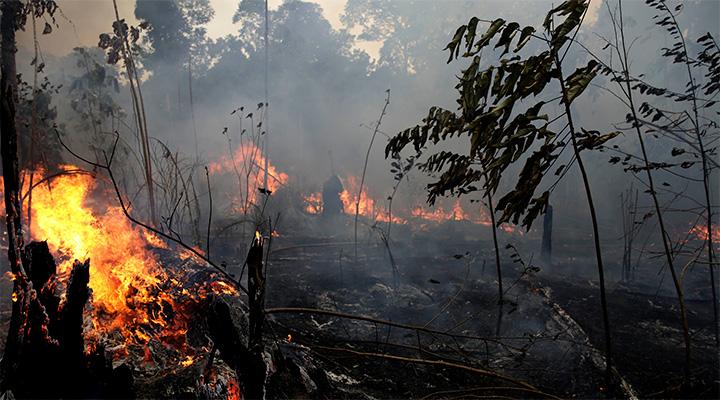 московии грозят пожары и нехватка продовольствия из-за отсутствия снега